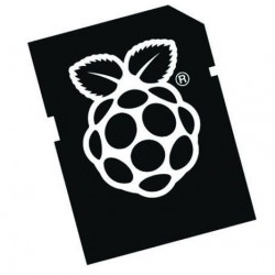 Carte micro SD Noobs pour Raspberry Pi